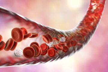 高円寺パーソナルジム監修『血中アミノ酸濃度について』パーソナルトレーナーが解説の画像