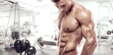 『トレーニング中に起こるパンプアップは筋肉がどうなっているの?』をトレーナーズジム江古田店パーソナルトレーナーが解説の画像