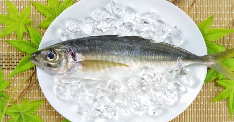 魚油(DHA・EPA)の含有量ランキングTOP5~練馬・江古田・小竹向原のパーソナル ジム~の画像