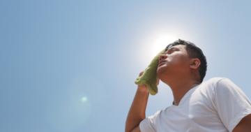 夏バテにならないためにしっかり水分を補給して運動の習慣を身に付けよう~練馬・江古田・小竹向原のパーソナル ジム~の画像